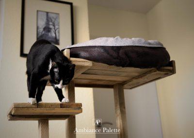 Arbre à chat design par Ambiance Palette (25)